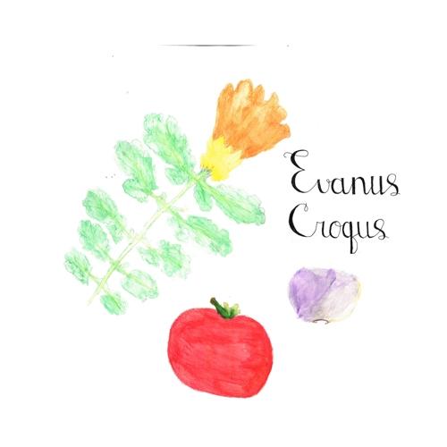 evanus_croques_grainaille